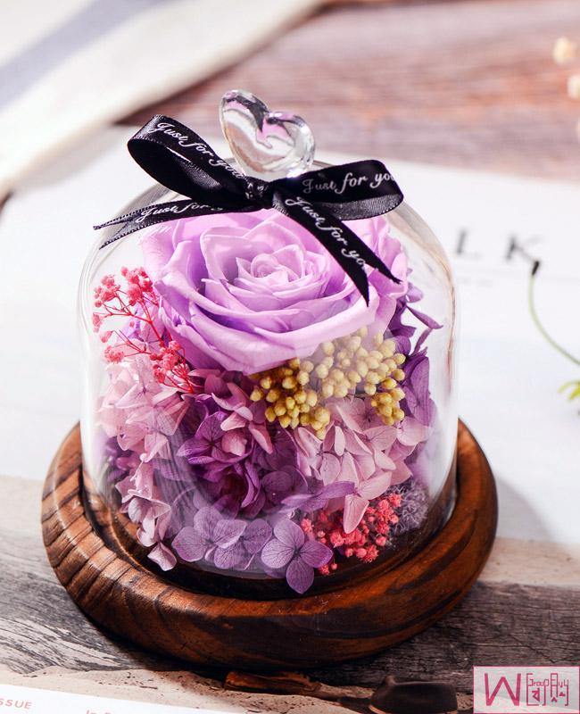 爱丽丝紫色玫瑰永生花玻璃罩礼盒,送女友最佳选择,永不枯萎的恋爱,包邮