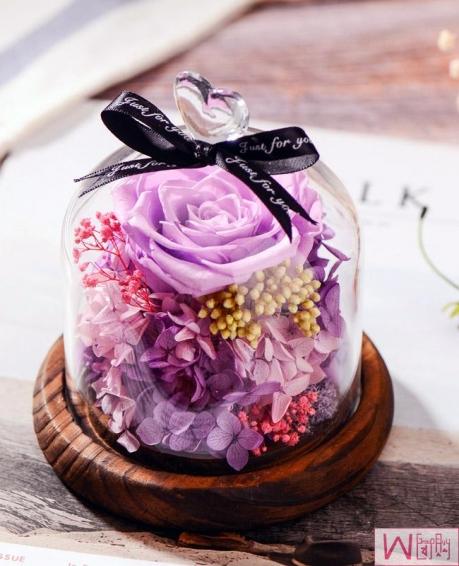 爱丽丝紫色玫瑰永生花玻璃罩礼盒