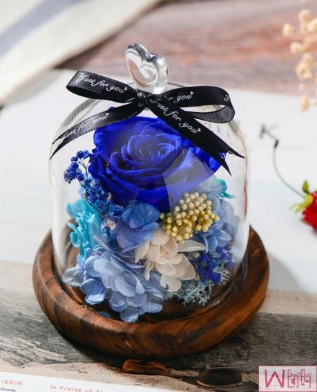 蓝色妖姬蓝色玫瑰永生花玻璃罩礼盒
