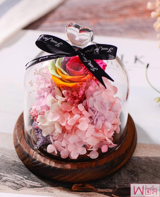 七彩玫瑰永生花玻璃罩礼盒,送女友最佳选择,永不枯萎的恋爱,包邮