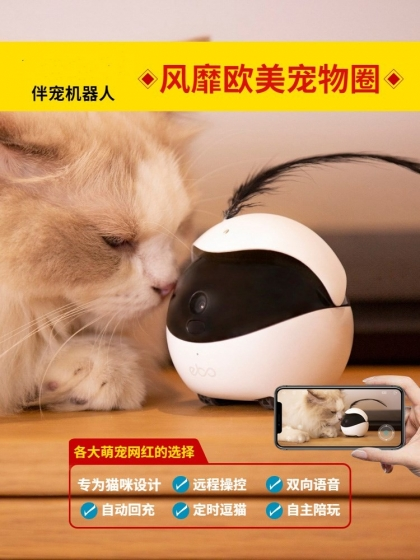 Pet intelligent robot automatic cat toy remote monitoring camera, 陪伴 每时每刻